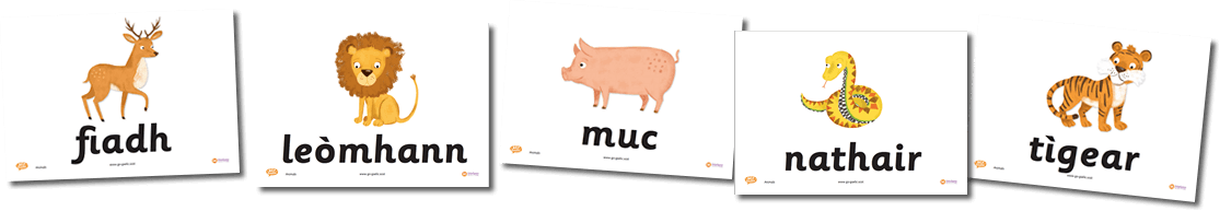 Animal Flashcards in Gaelic