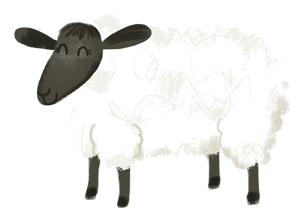 Illustration: Sheep